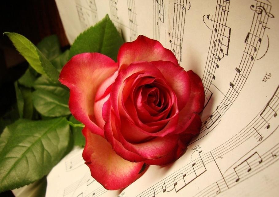 Музыкальные розы открытки