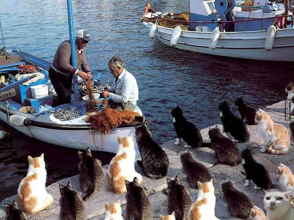 Фото с рыбой суеверия хочу