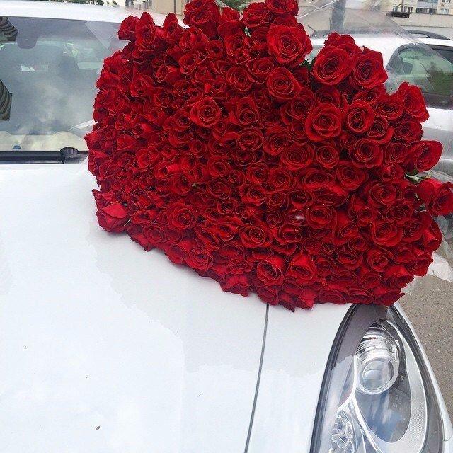 вот, после фото роз в машине на стекле арка выглядит