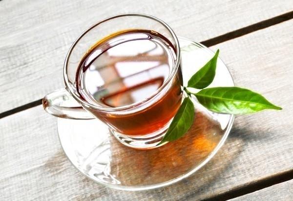 Зеленый чай — польза и вред для организма